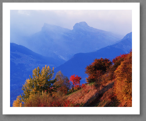 lueur-automne